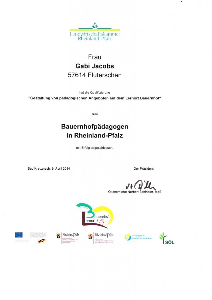 zertifikat gabi B.päd